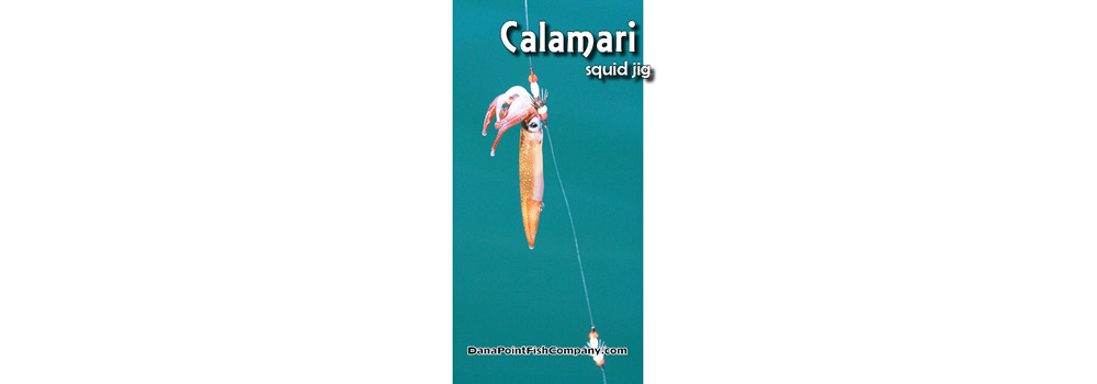 Calamari on Squid Jig