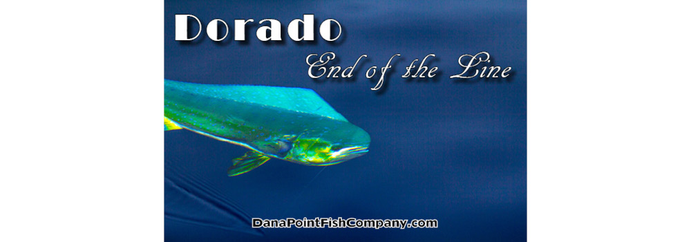 Dorado – End of the Line