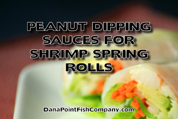 Peanut Dipping Sauces for Shrimp Spring Rolls