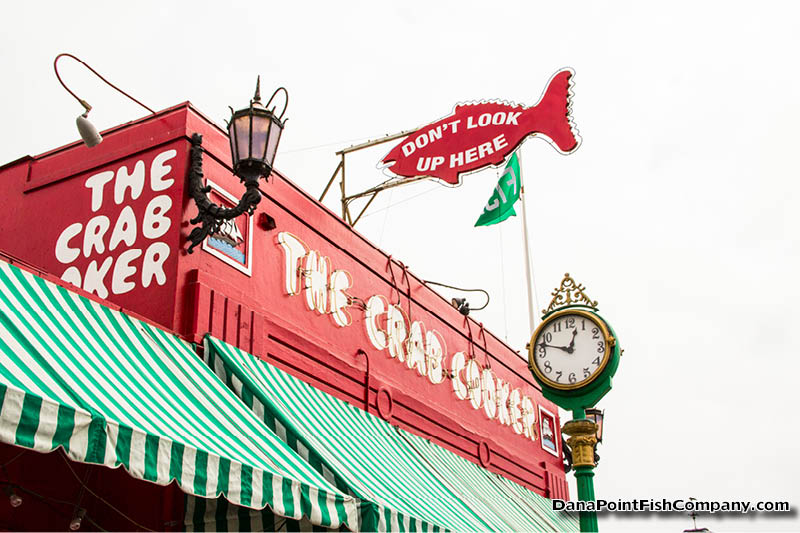 Travel the crab cooker at newport beach ca dana point for Dana point pier fishing